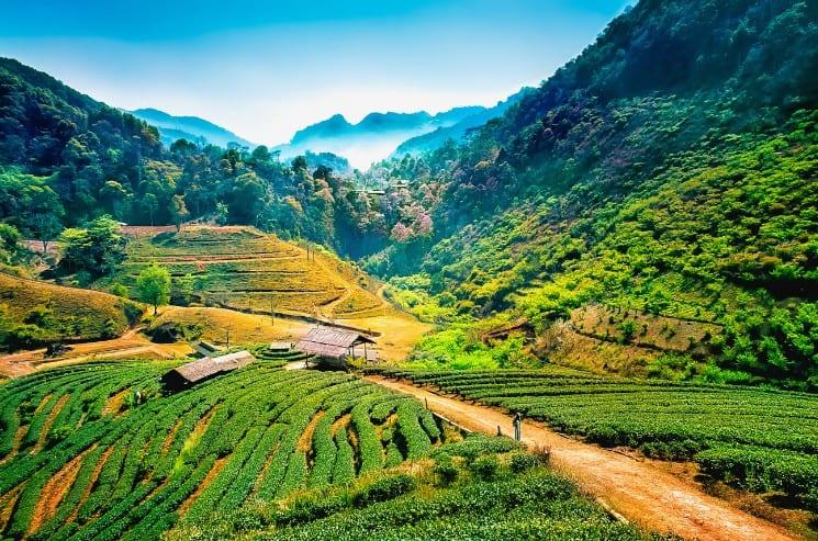 25 Best Honeymoon Destinations in Asia 19