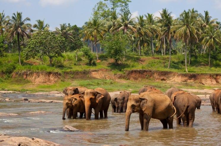 25 Best Honeymoon Destinations in Asia 24