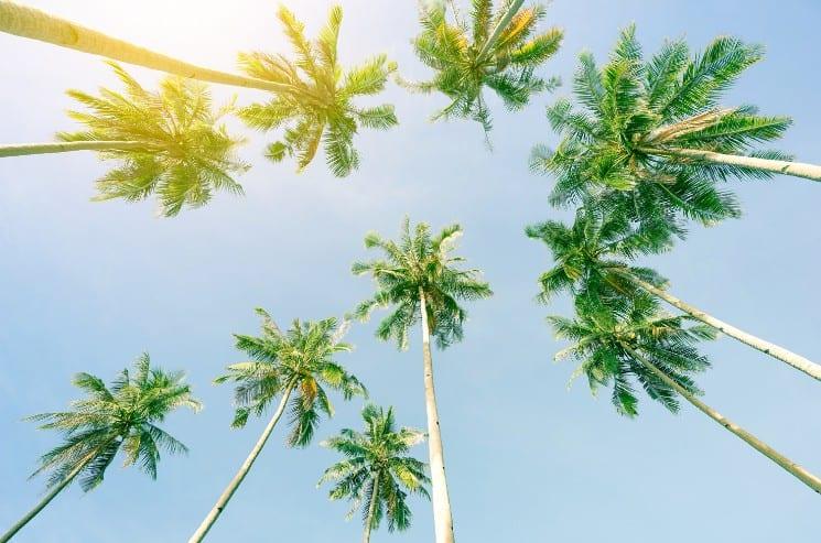 25 Best Honeymoon Destinations in the USA 5