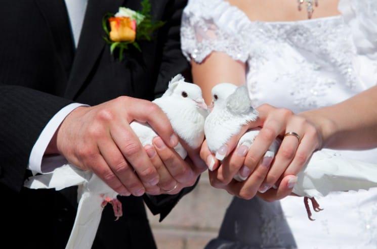 Zábava na svatbu: 31 tipů na skvělý svatební program 13